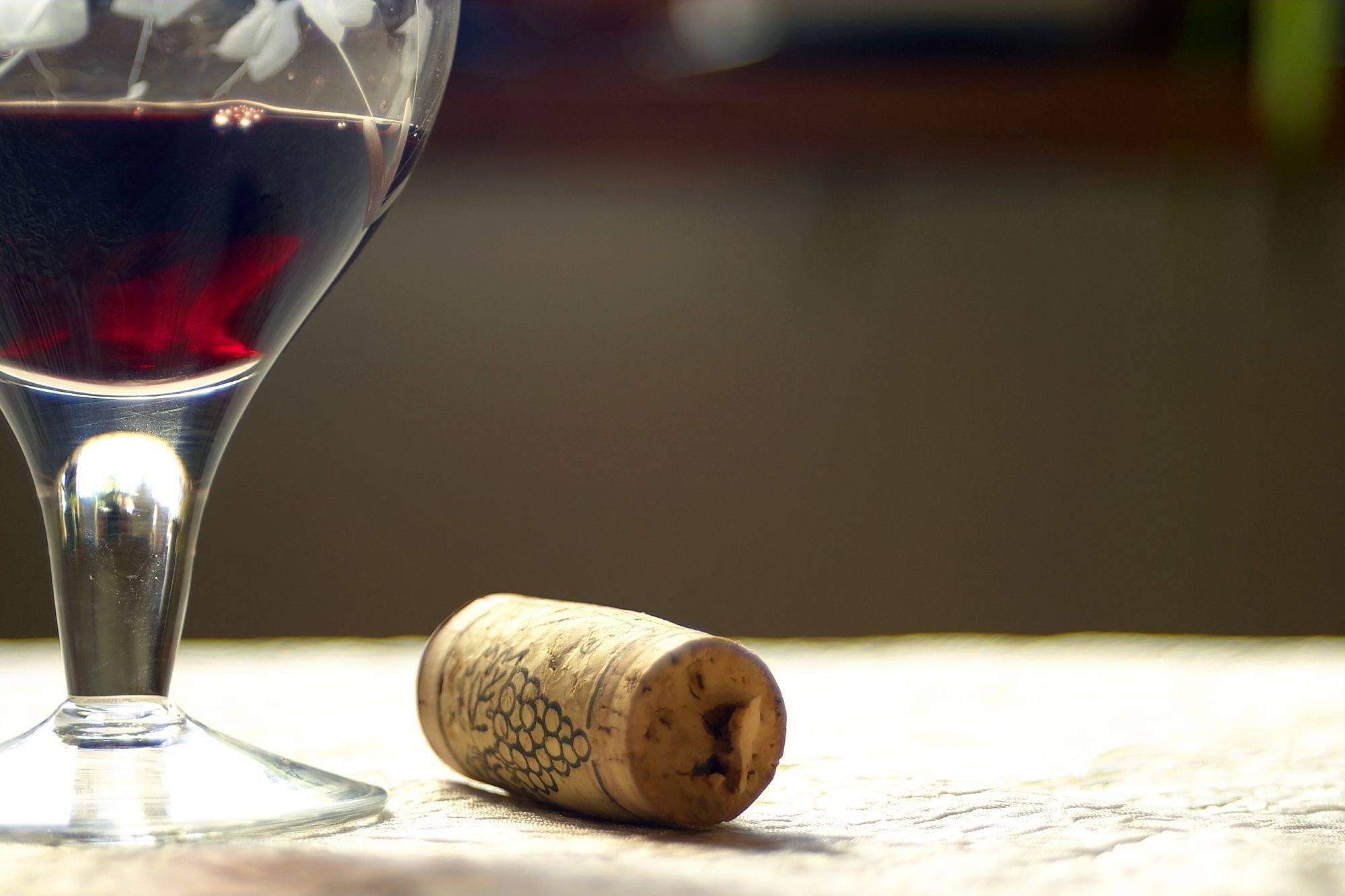 Красное сухое вино при похудении, можно ли пить вино на диете | доктор борменталь