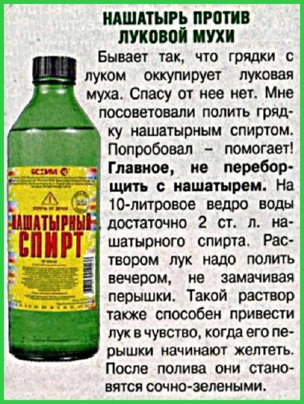 Нашатырный спирт для отрезвления