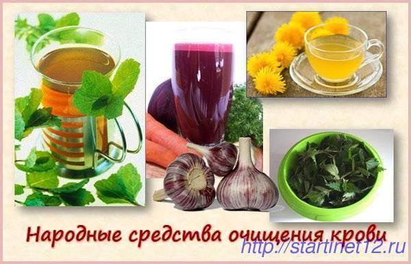 Как очистить кровь от токсинов аппаратным методом или при помощи трав, диеты и ванны