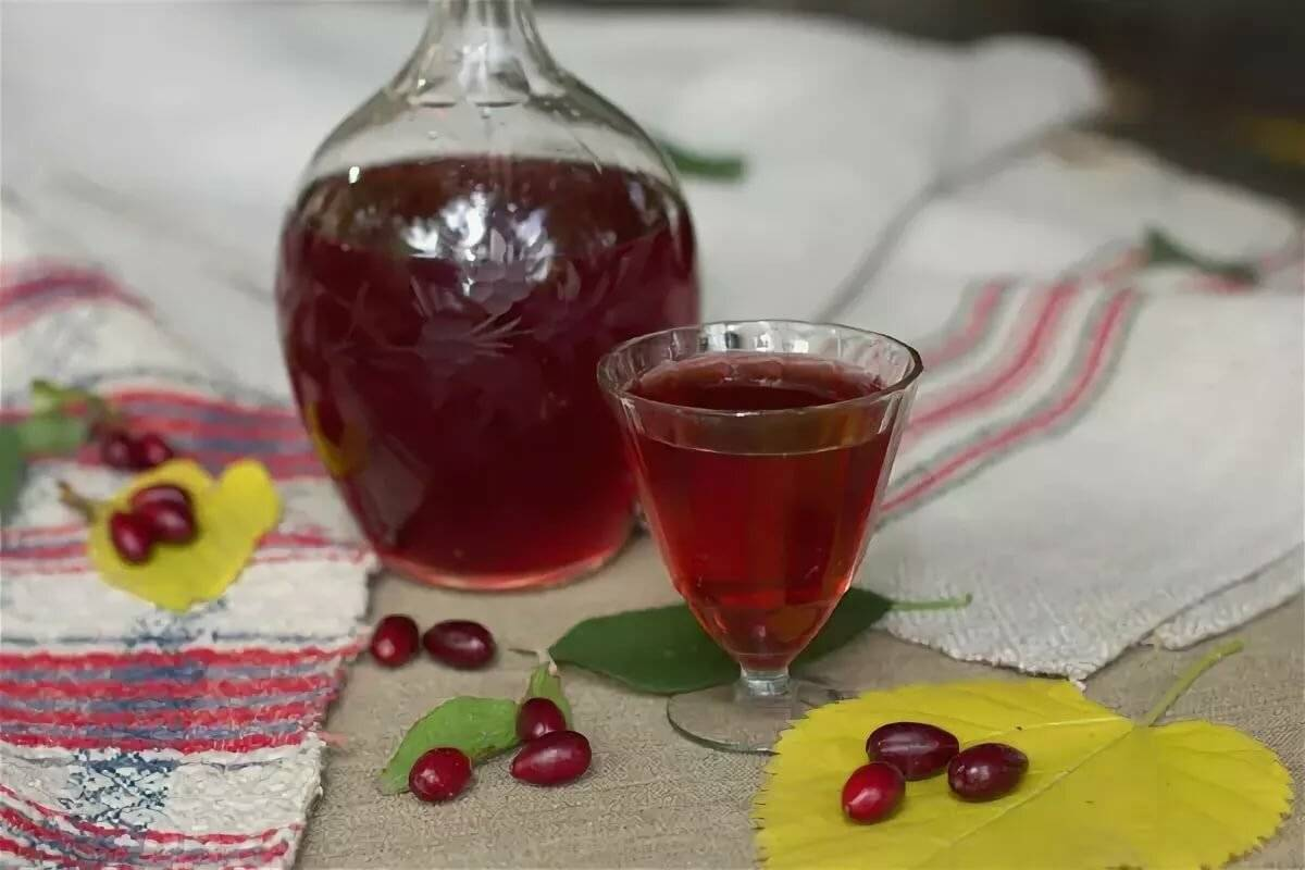 Чем полезны ягоды кизила и какие напитки можно приготовить из них. готовим самогон из кизила