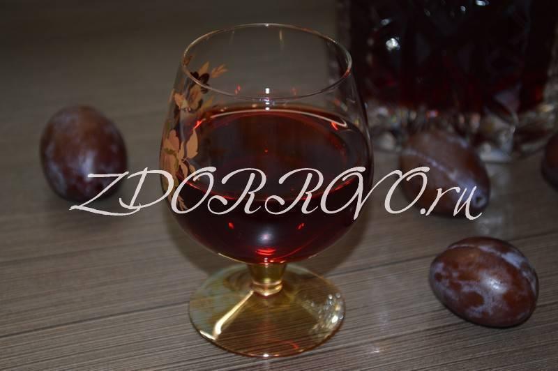 Как сделать вино из сливы в домашних условиях