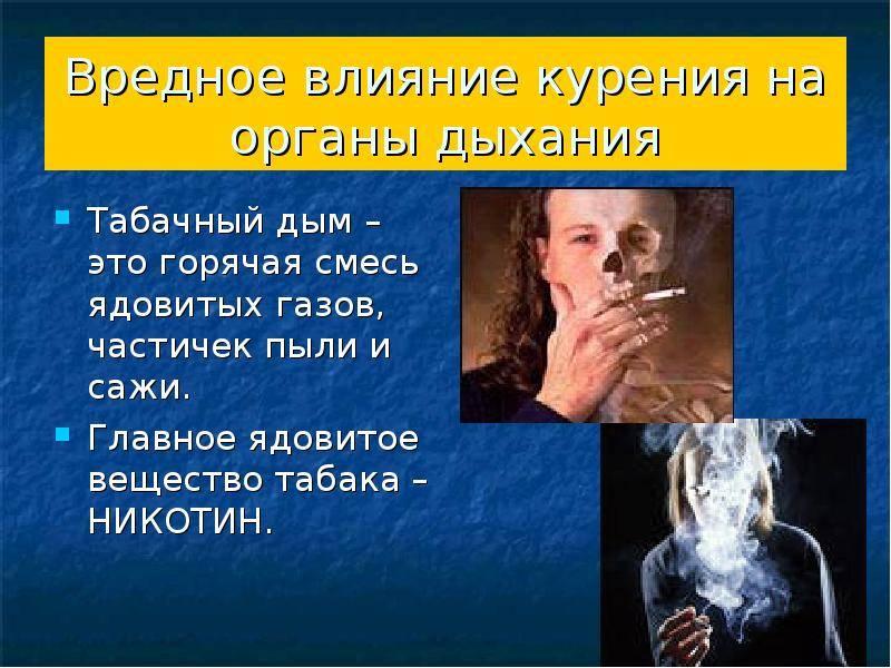 Как на развитие рака влияют курение, алкоголь и гормоны