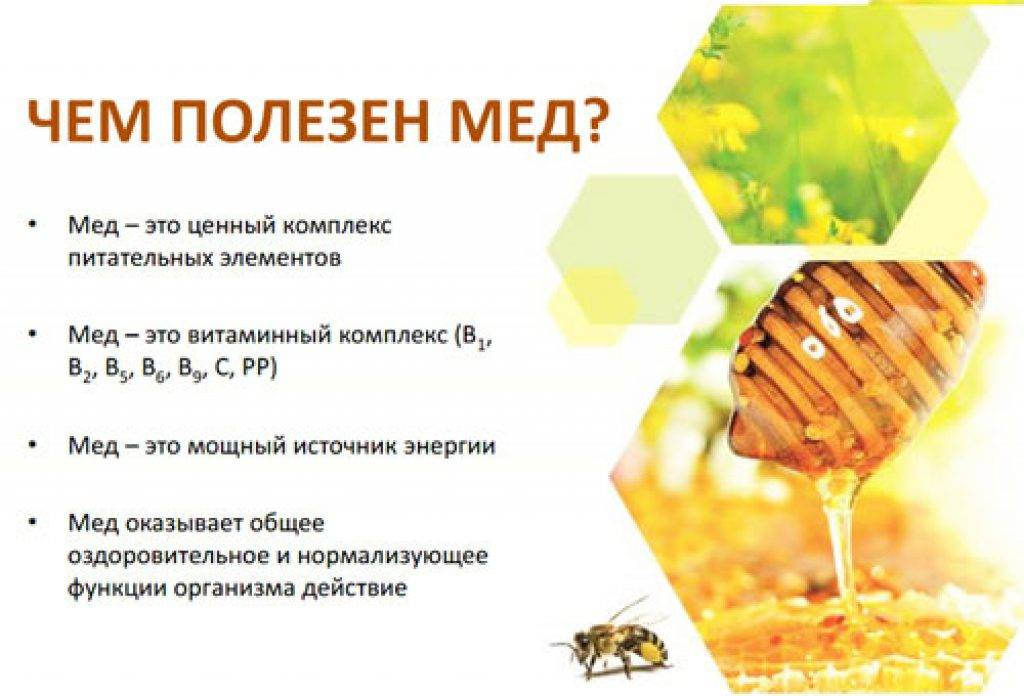 Мед: польза и вред, калорийность и химический состав меда, противопоказания к употреблению меда, рекомендации по применению меда в народной медицине.