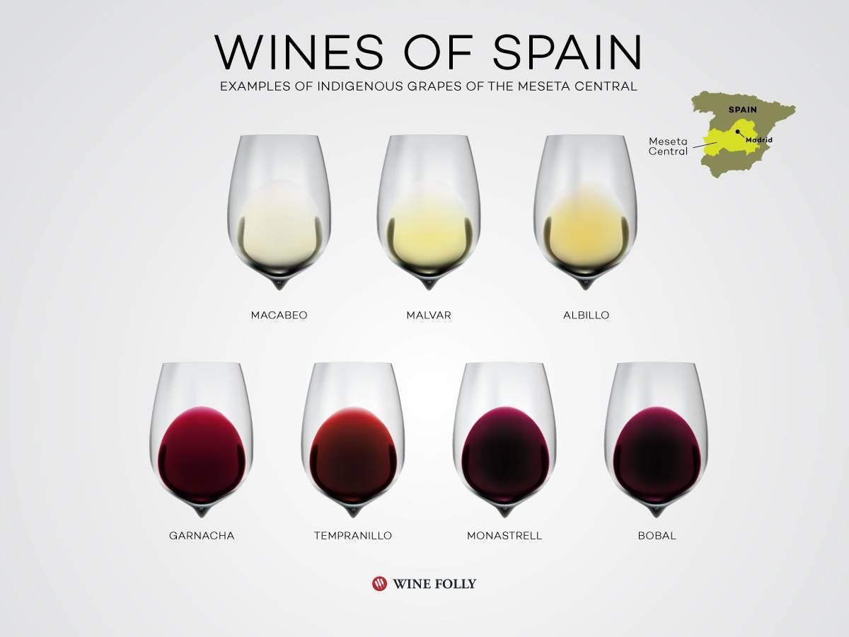 Испанское вино красное и белое, сухое, полусладкое, игристое, крепленое, розовое. классификация, бренды, составы, цены