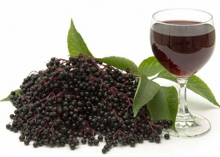 Ликер из черноплодной рябины: 4 популярных рецепта в домашних условиях