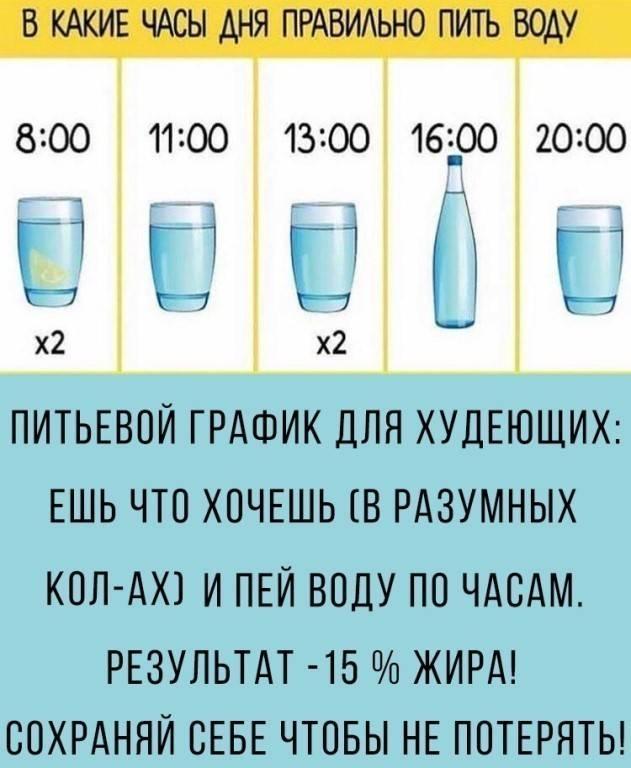 Можно ли пить воду после еды?