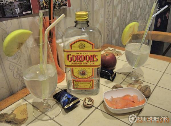 Джин, как пить джин, c чем размешивать, история напитка