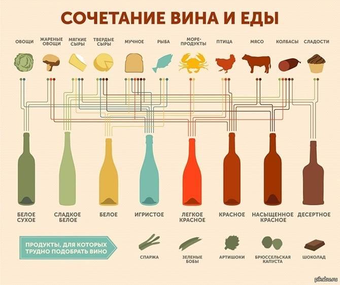 Винный этикет: как держать бокал с вином, температура подачи вина