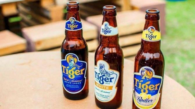 Тайский ром: водка, самогон и другие алкогольные напитки, которые стоит попробовать в таиланде