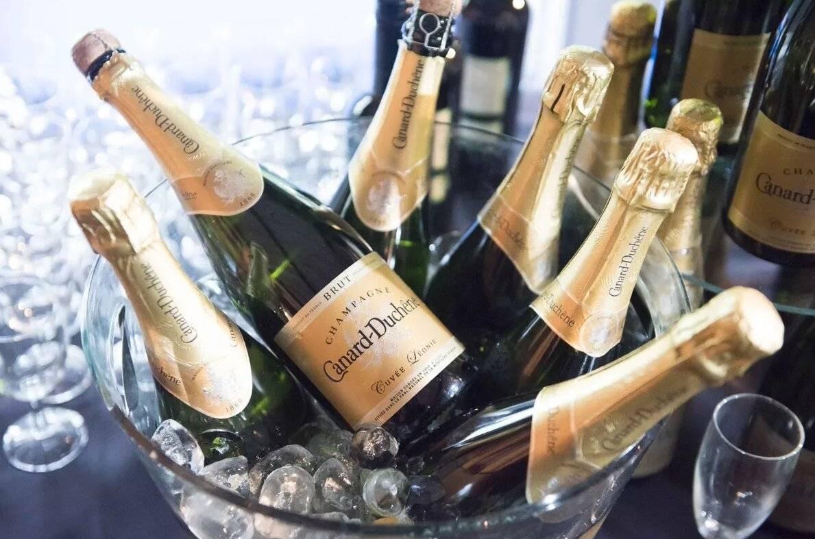 Дорогое шампанское: названия самых дорогостоящих в мире, необычных бутылок игристого вина