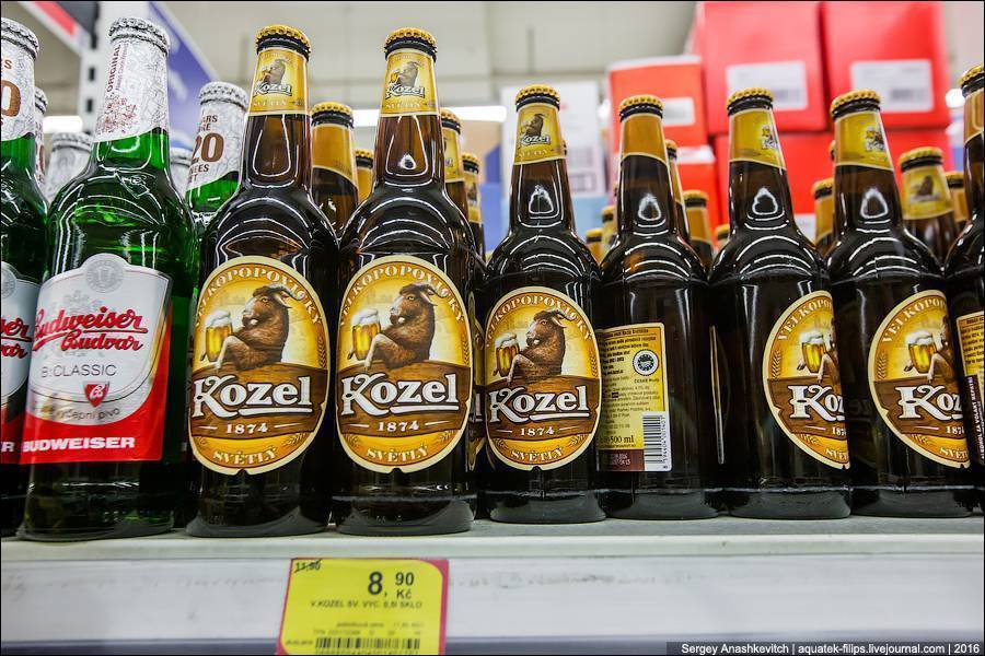 Рейтинг самого лучшего пива в россии: темного и светлого
