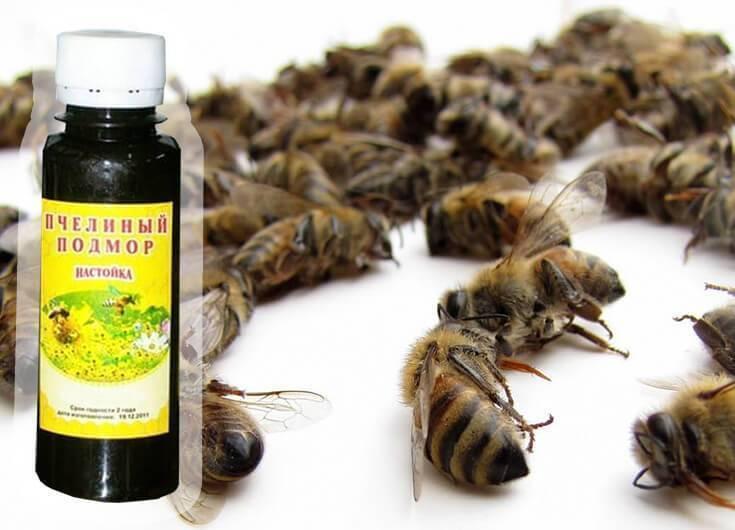 [рецепт] + подмор пчелиный настойка на спирту