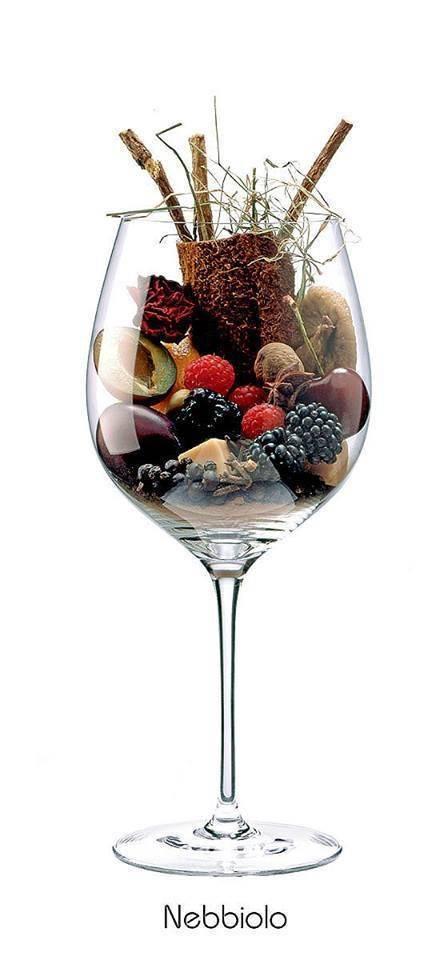 Сорта винограда и их характеристики