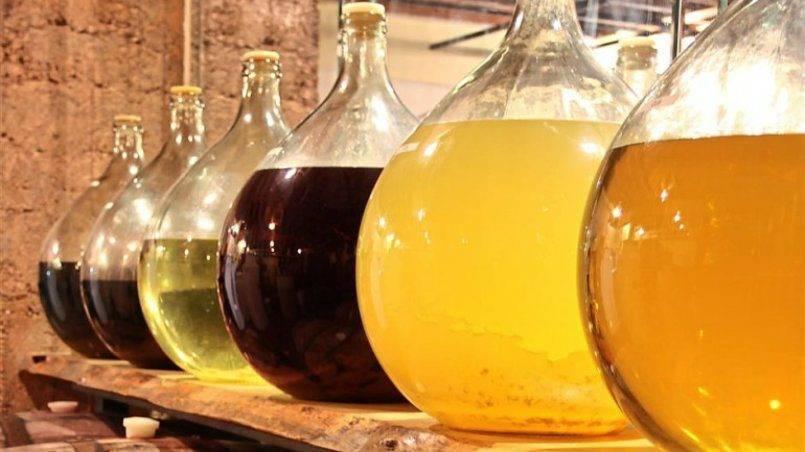 Медовуха в домашних условиях – простые рецепты хмельного мёда
