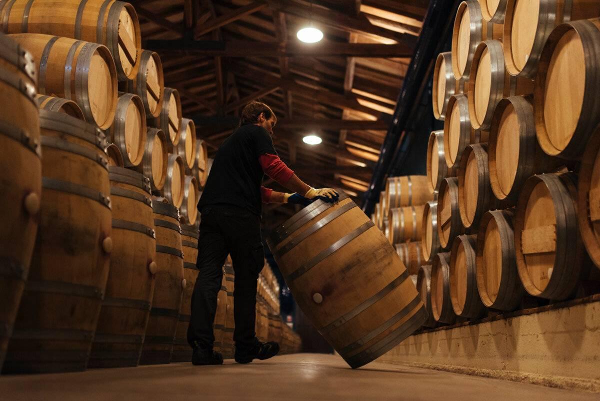Как делают игристое вино?