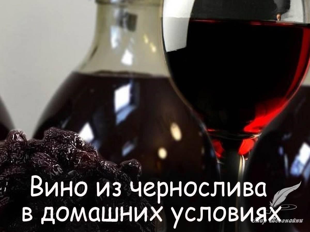 Вино из сухофруктов в домашних условиях: топ-6 рецептов