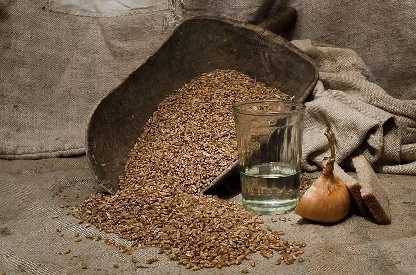 Самогон из пророщенной пшеницы