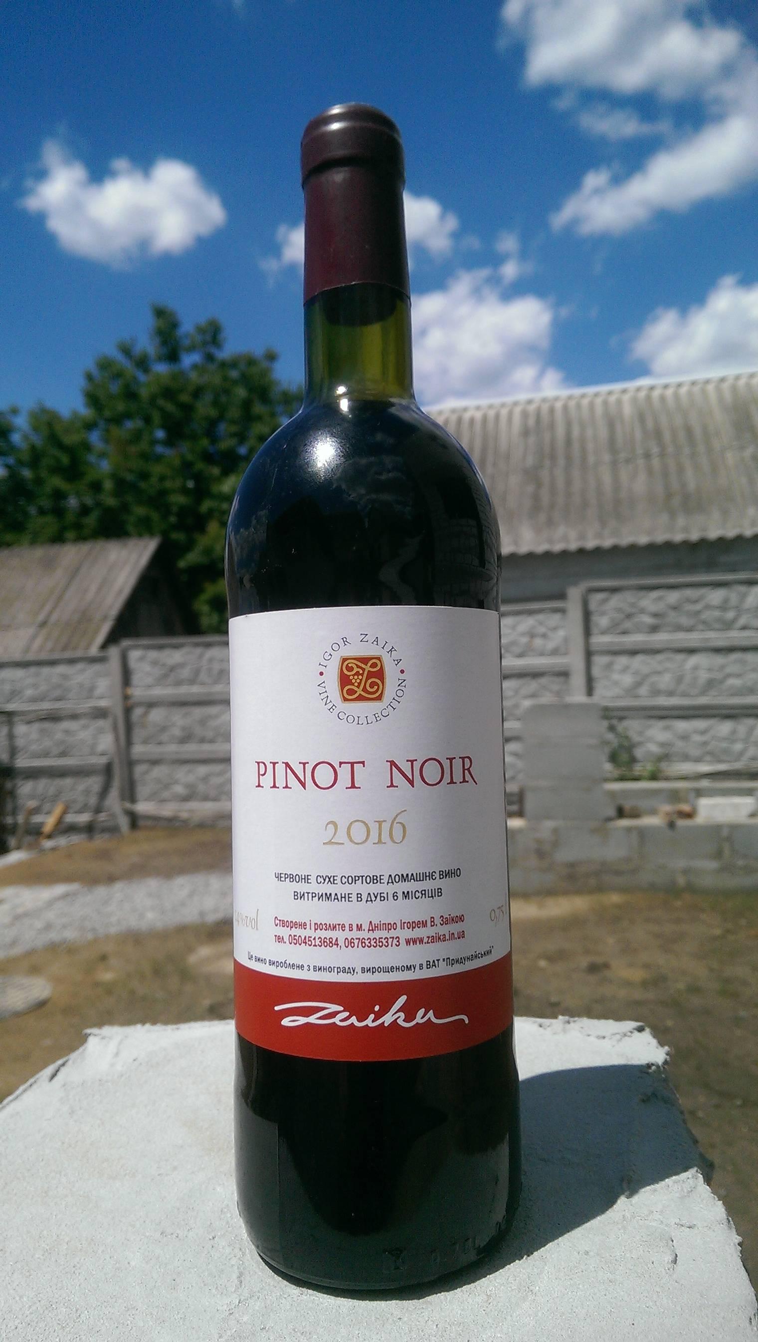 Виноград пино нуар: что это за технический сорт, характеристики, как выращивать