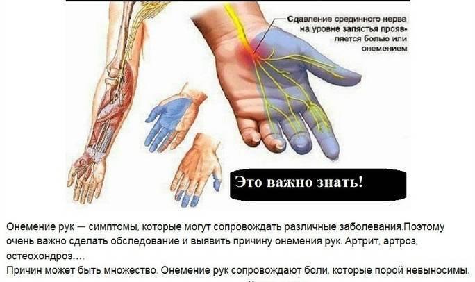Почему после алкоголя немеют руки