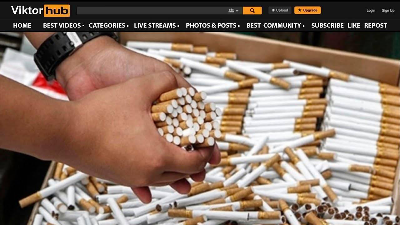 Бизнес по производству сигарет, или как открыть табачную фабрику