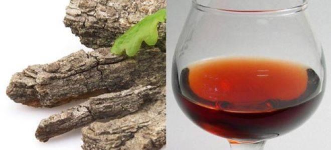 Домашняя настойка на коре дуба и самогоне, спирте или водке. как приготовить лечебные настойки и отвары из дубовой коры