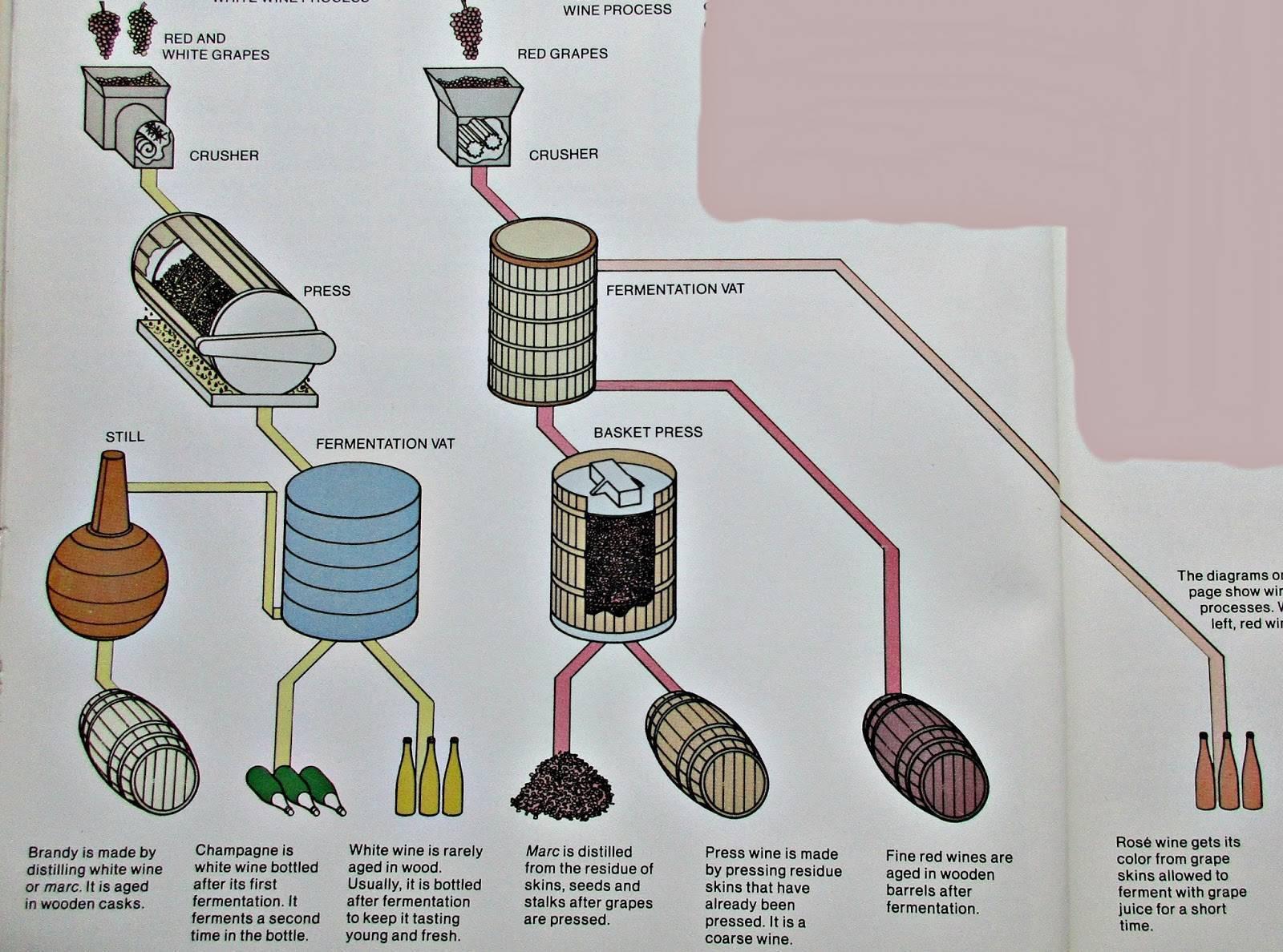 Технология изготовления сухого вина