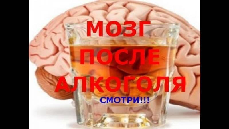 Восстановление головного мозга после алкоголя