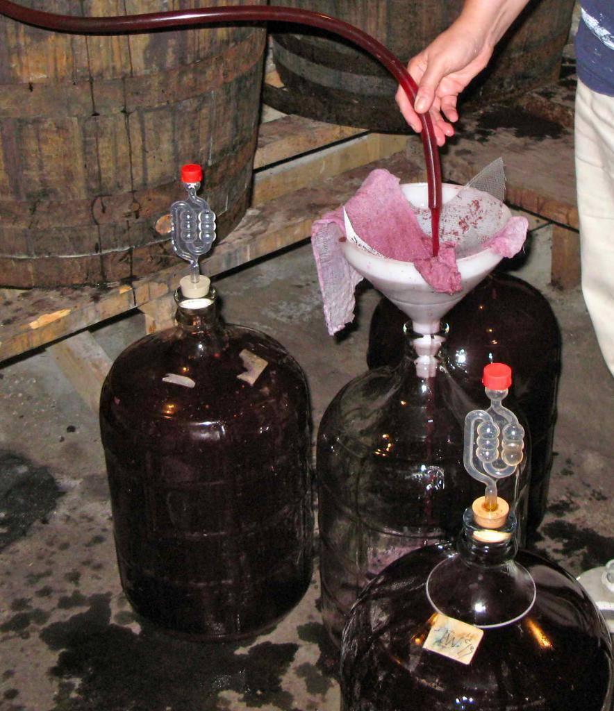 Вино не бродит что делать: почему сусло перестало играть и как спасти напиток