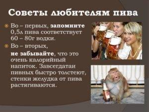 Правда или вымысел, что от пива можно растолстеть? | bezprivychek.ru