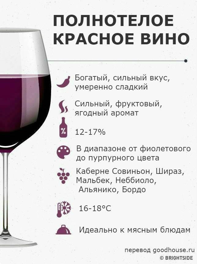 Какое вино купить в испании: полезные советы, фото и цены. вина испании