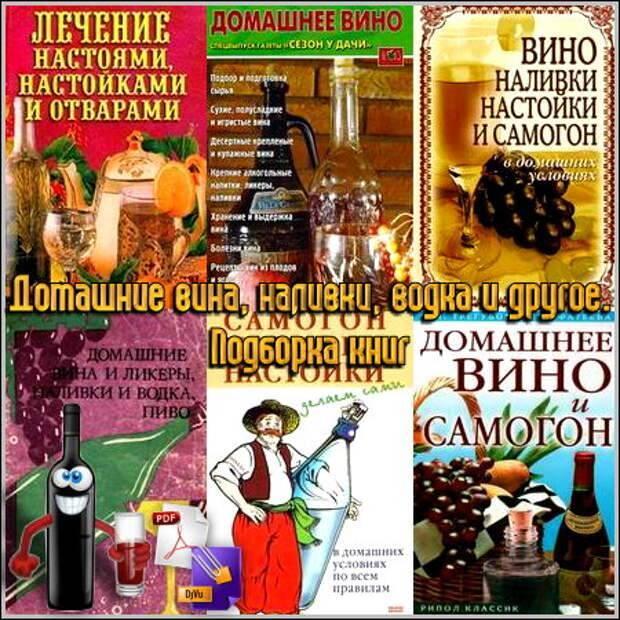 Читать книгу вино, наливки, настойки и самогон в домашних условиях татьяны лагутиной : онлайн чтение - страница 1