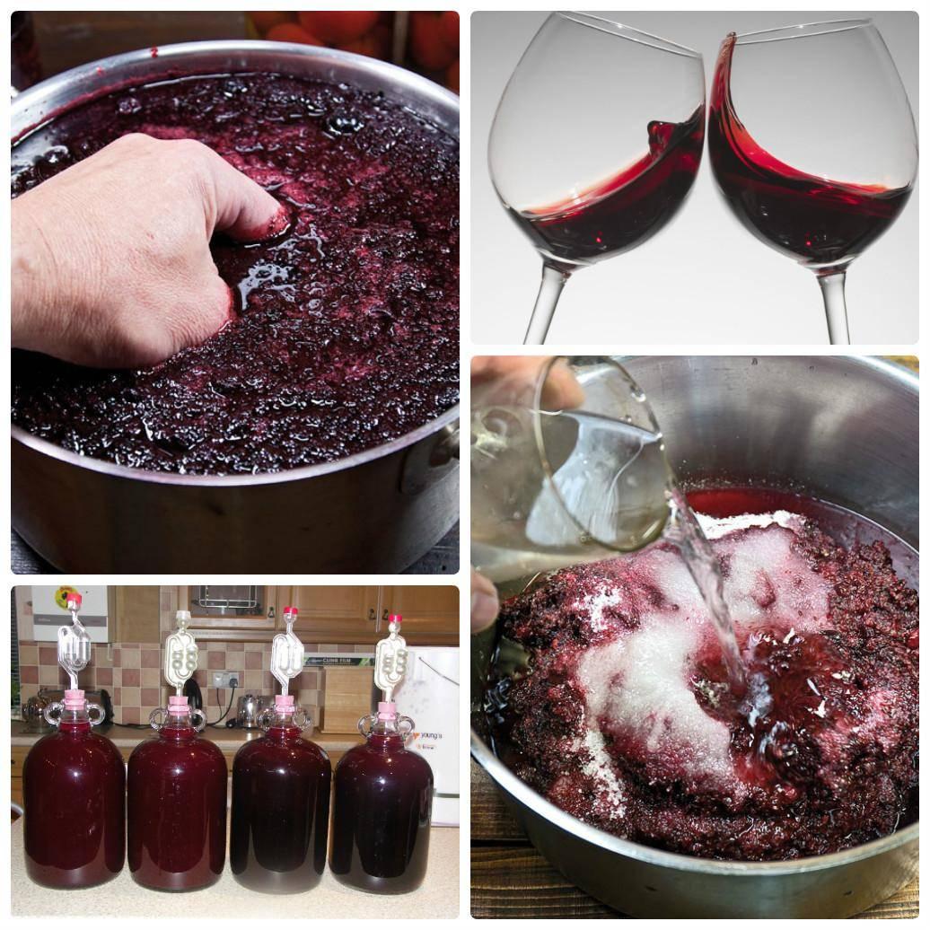 Вино из ранеток в домашних условиях простой