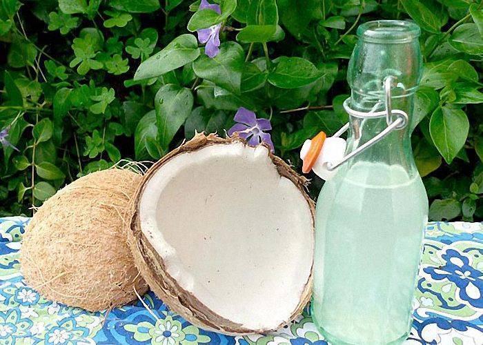 Как называется кокосовый самогон? рецепты и технология приготовления без особых вложений   про самогон и другие напитки ?   яндекс дзен