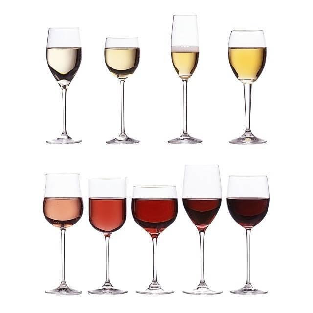 Как правильно выбирать бокалы для вина: красные и белые бокалы