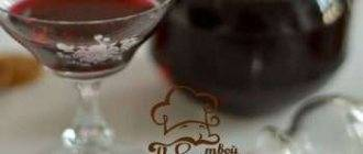 Шнапс – знаменитый немецкий самогон | алкофан | яндекс дзен