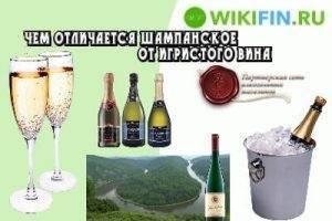 Шампанское и игристое вино — в чем разница, какие отличия?
