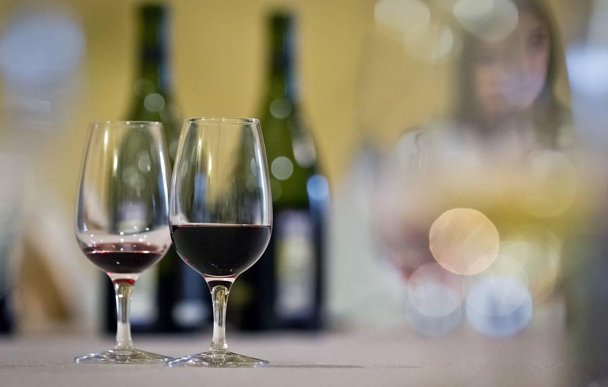 Чем винный напиток отличается от вина?искусство самогоноварения