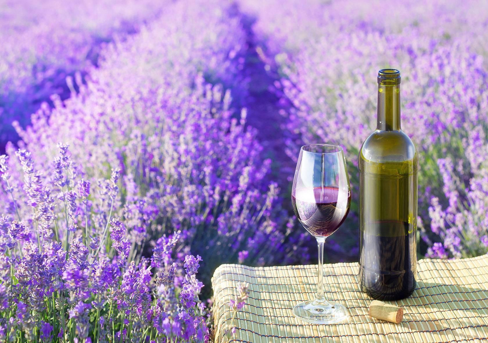 Лучшие вина прованса — апелласьон розовых вин