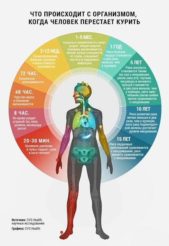 Что происходит с организмом, если бросишь курить: по дням