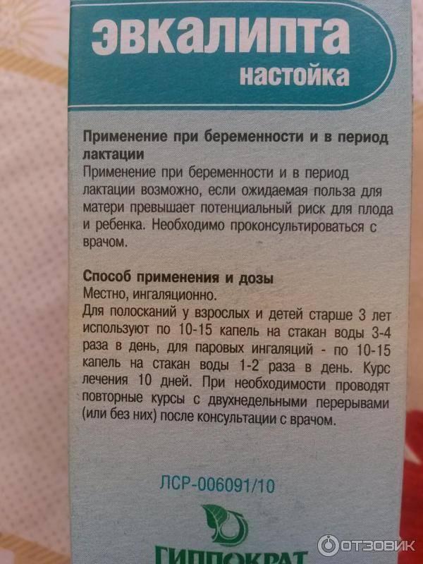 Отвар эвкалипта — применение при инфекционных и воспалительных заболеваниях