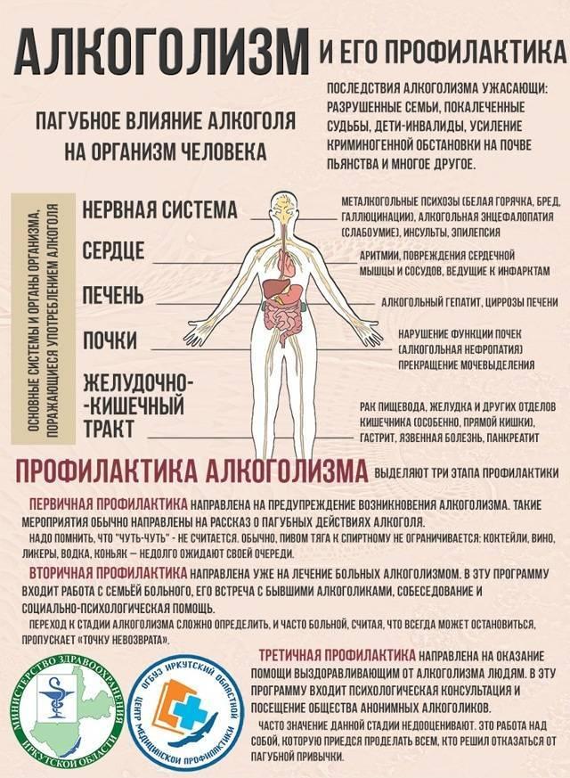 Восстановление после отказа от алкоголя: этапы, состояние организма; народные и медикаментозные средства для восстановления