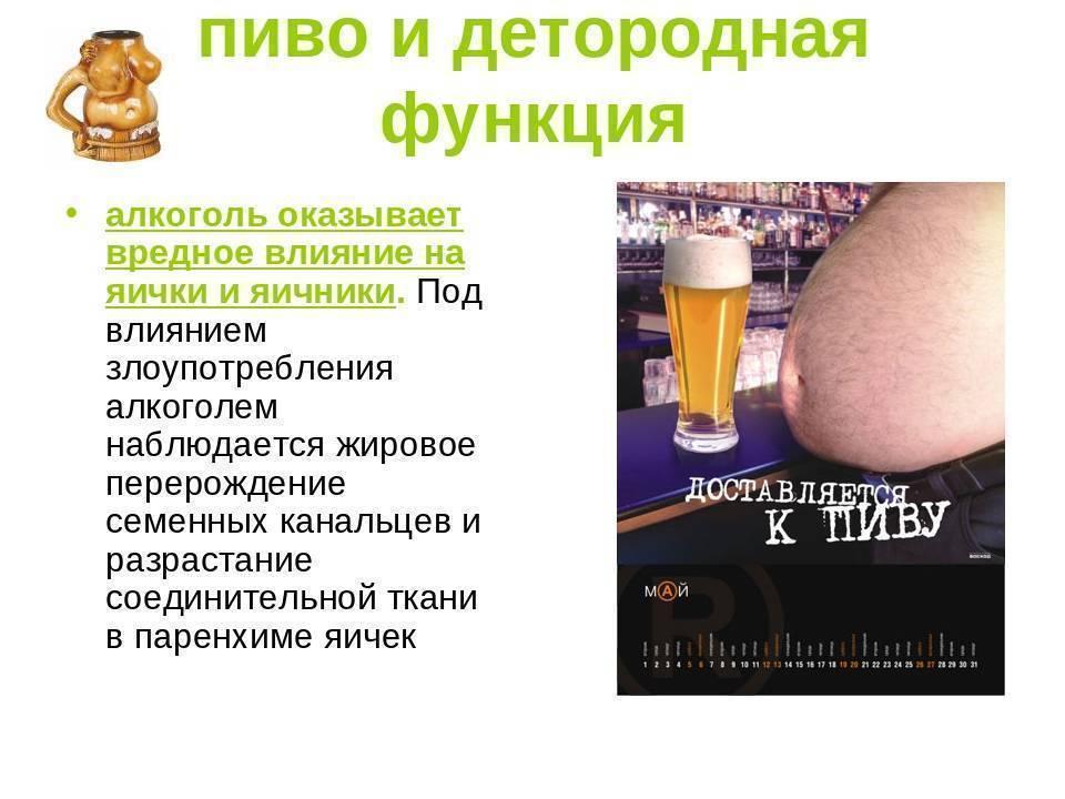 ? вся правда о том, как пиво влияет на потенцию у мужчин