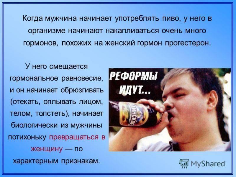 Влияние пива на мужской организм и потенцию