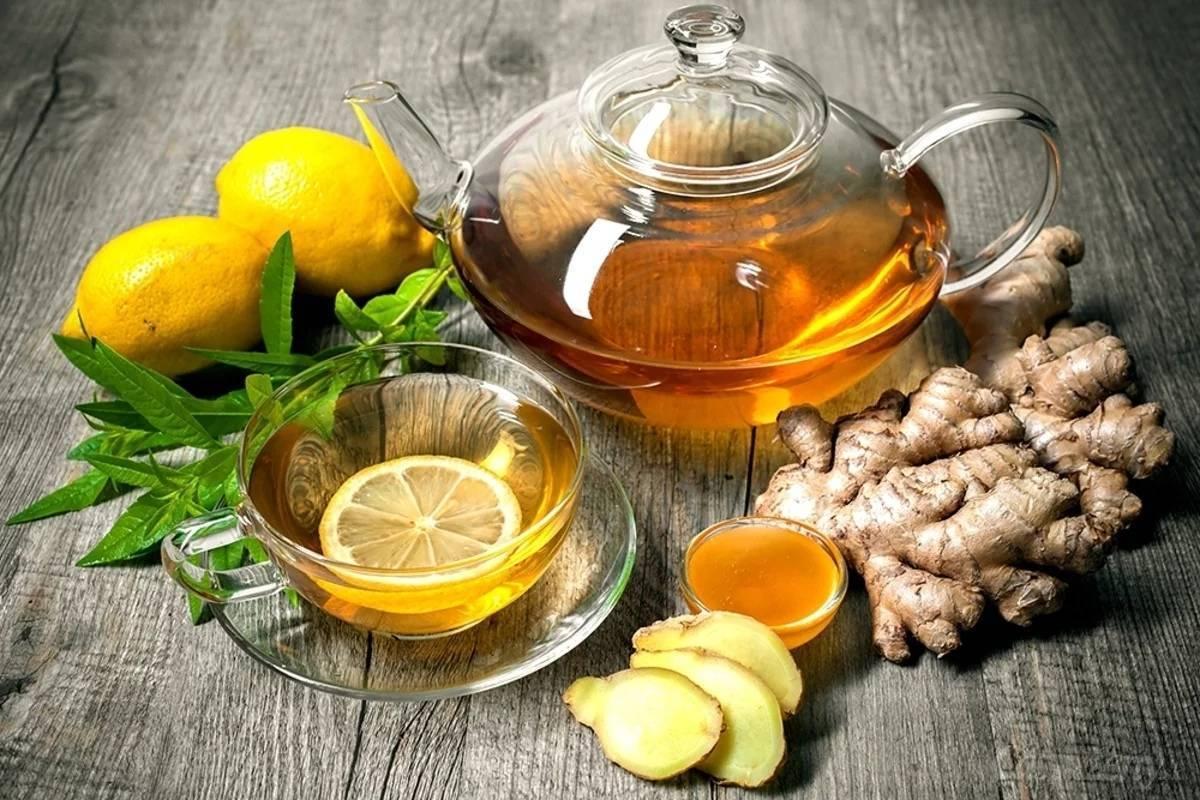 Рецепты настоек с водкой и медом. Применение в медицине и кулинарии