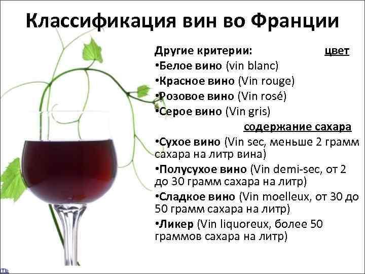 Какие бывают вина? виды вин по сортам, по типам.