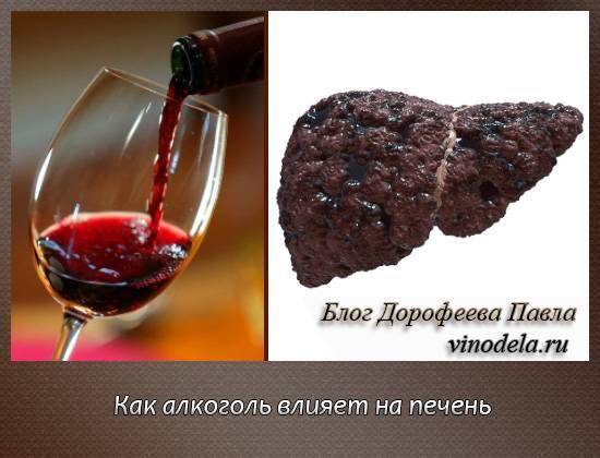 Защита и профилактика для печени после алкоголя отравление.ру защита и профилактика для печени после алкоголя