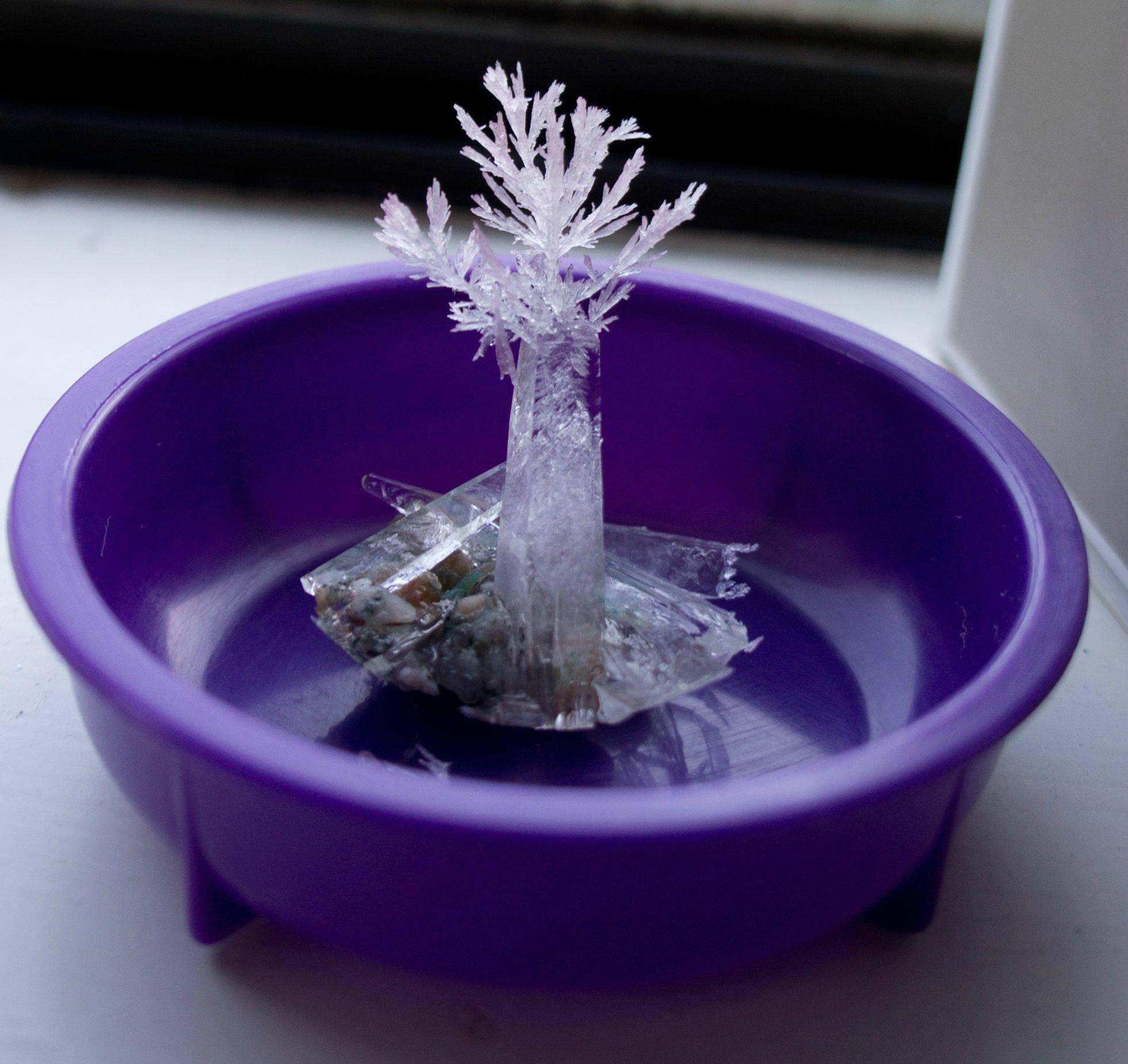 Кристаллы в домашних условиях: быстрое выращивание красивых и разноцветных кристаллов. кристаллы из соли — выращивание крупных и разноцветных красивых декоративных кристаллов (110 фото)