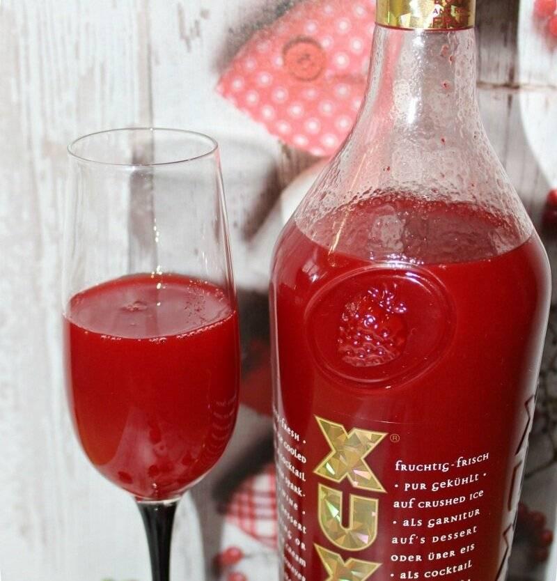 Ксю ксю ликер: как приготовить клубничную водку в домашних условиях, сколько градусов xuxu, как пить правильно в коктейлях