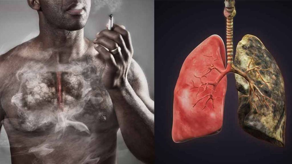 Влияет ли курение на почки — все о печени
