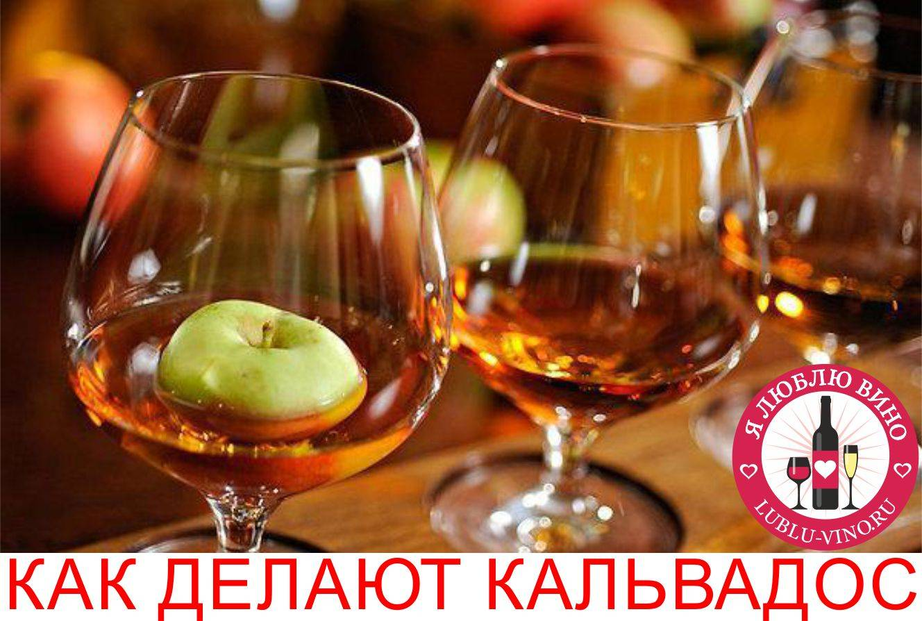 Рецепт кальвадоса из яблок в домашних условиях по классическому рецепту с дубовой щепой. кальвадос из яблок дома на водке или самогоне - womens-24